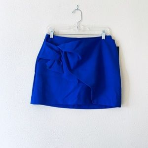 NWT Zara Skirt